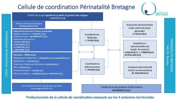 Organigramme du réseau perinatalité Bretagne